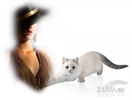 Кошка и одинокая женщина против мужчины.